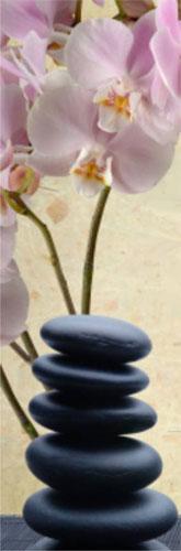 Real Tratamento Orquídea Natural
