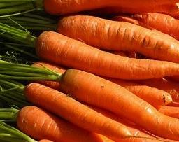 Cenoura Vitamina A